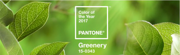 Cor do ano 2017 pantone